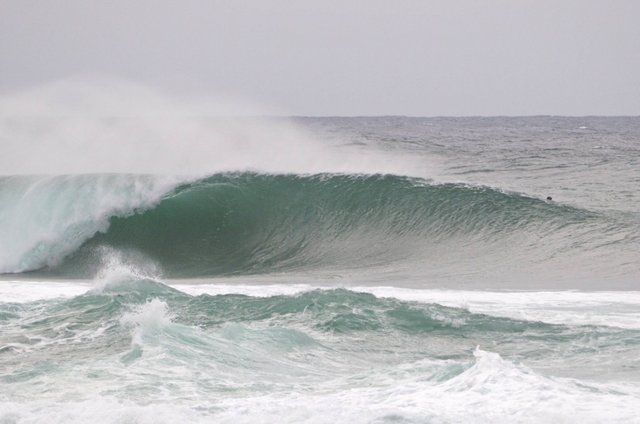 FrielPhoto's photo of Pipeline & Backdoor