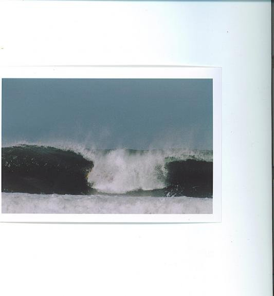 JUSTIN 's photo of Tamarindo