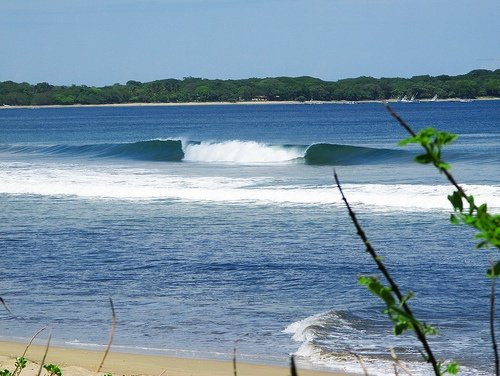 stevey's photo of Playa Grande - Guanacaste