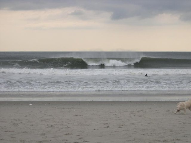 JG's photo of Rockaway