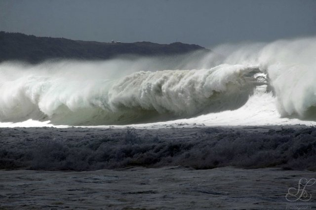 txlanphear's photo of Pipeline & Backdoor
