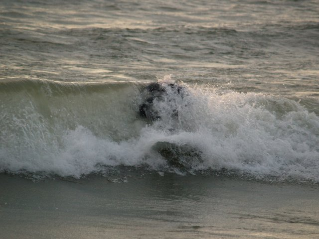 ItsMeMario's photo of Luna Pier