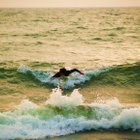Photo of Luna Pier