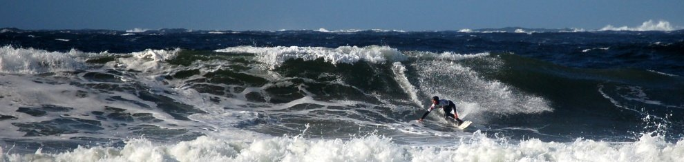 Charlie Durrant's photo of Chesterman Beach (South)