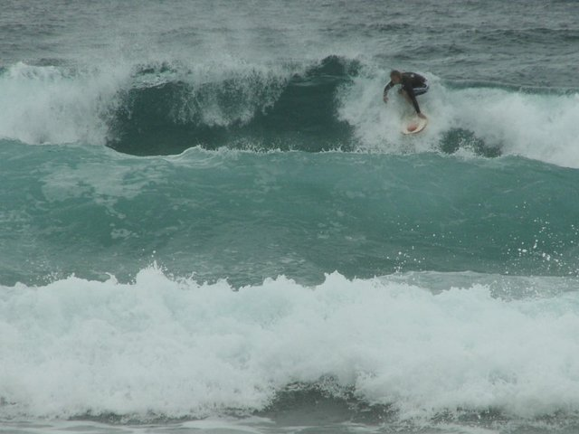 laura hally's photo of Kirra