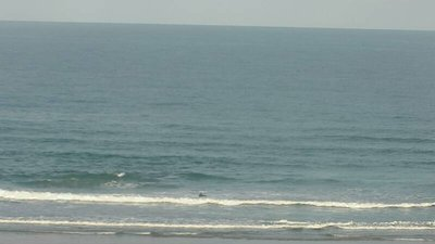 Newquay - Fistral North Surf Report, Surf Forecast and Live