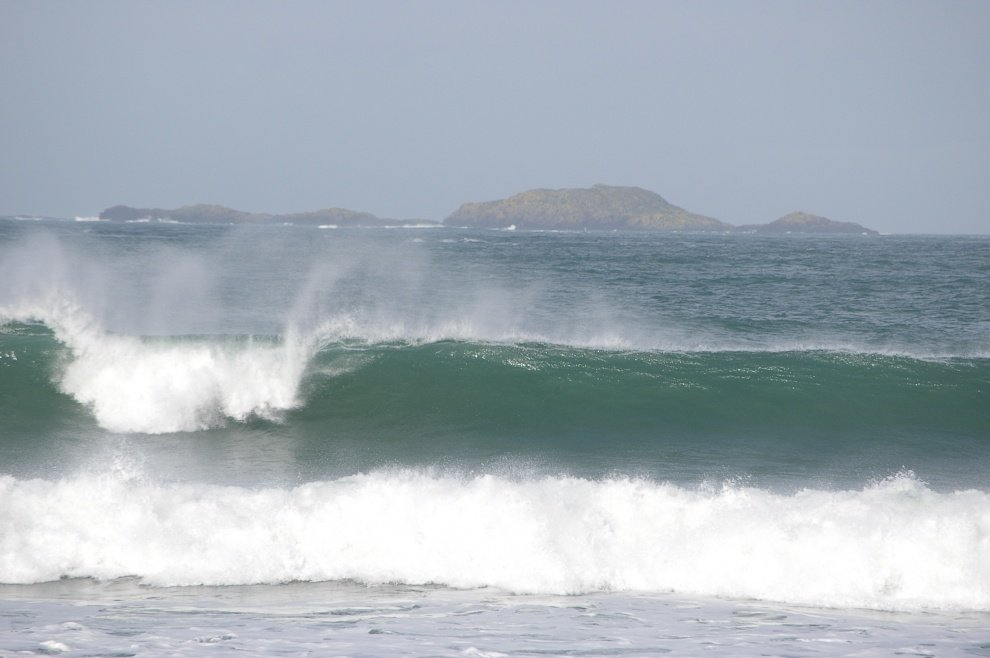 treedman's photo of Whitesands Bay