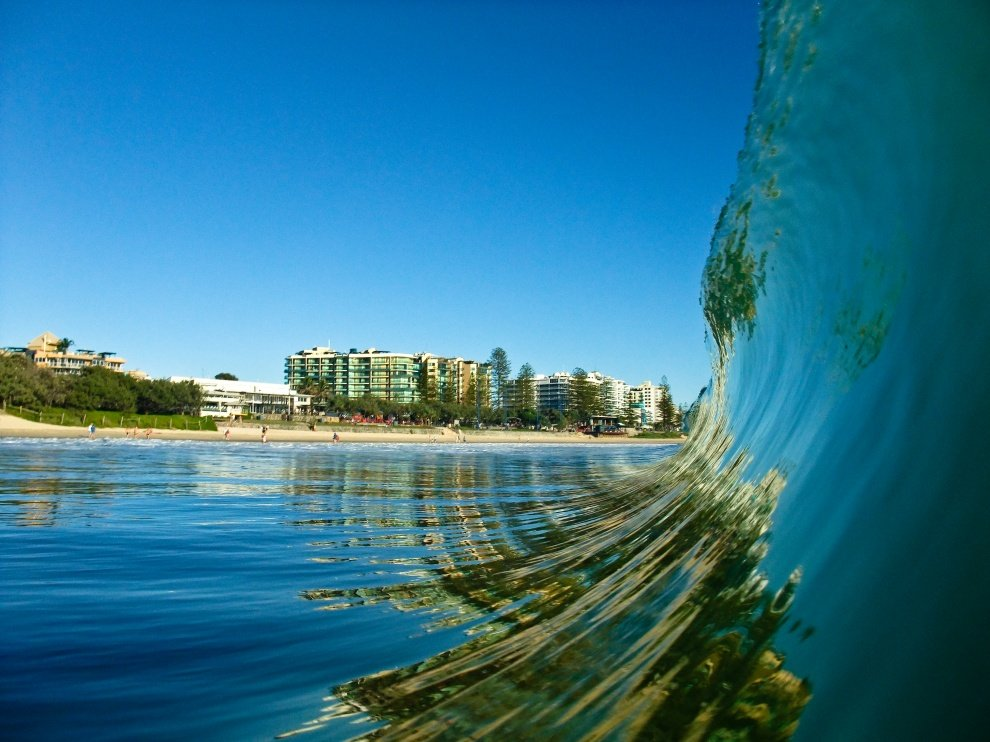 Sunshine Surf Safari's photo of Pin Cushion (Maroochydore)