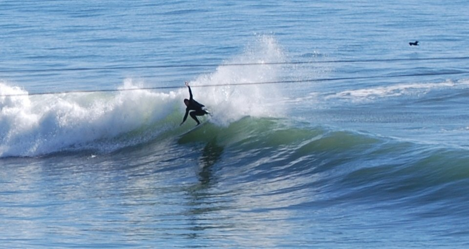Surf Dawg's photo of Skunk Point