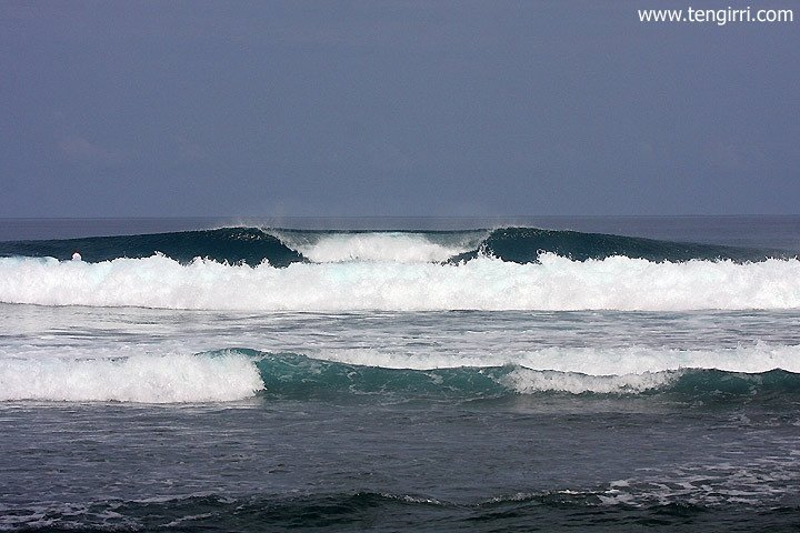 Tengirri Surf Charters's photo of Sibigau Rights