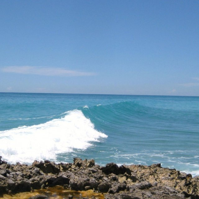 Surfer's Point - Barbados Spot Guide - Surf Forecast and Report