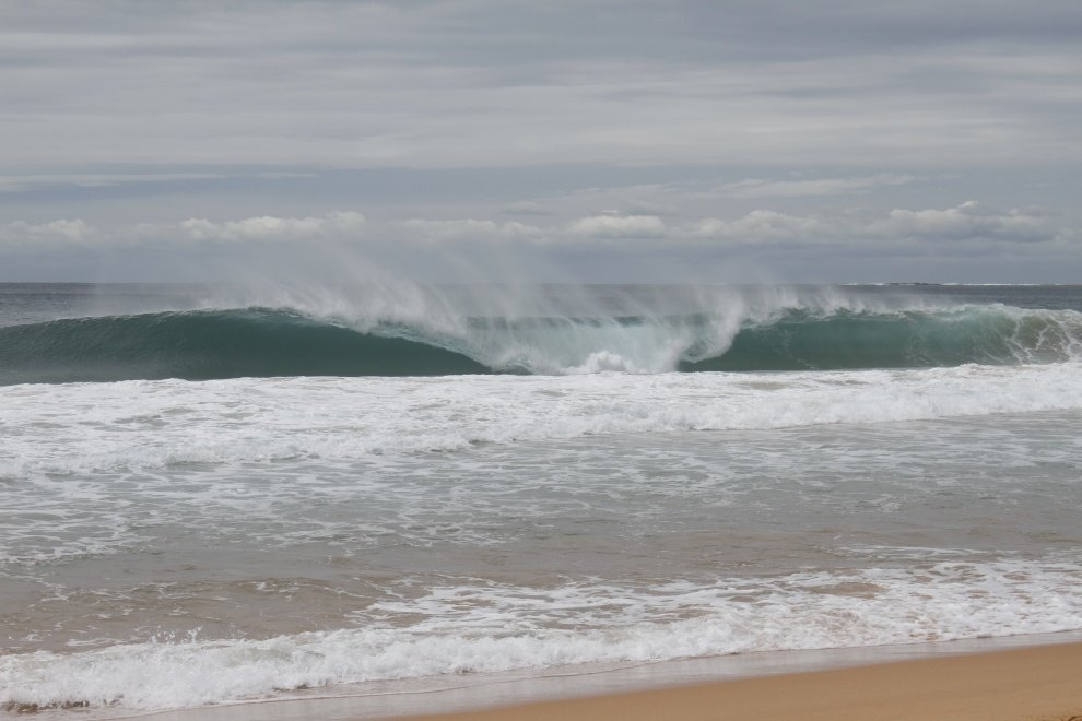 Surf Visions's photo of South Narrabeen