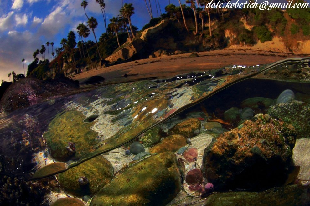 dale kobetich's photo of Laguna Beach (Rockpile)