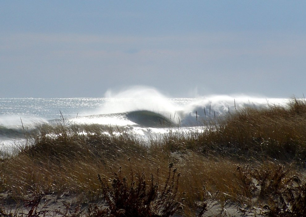 Bryan Zinski's photo of Avalon