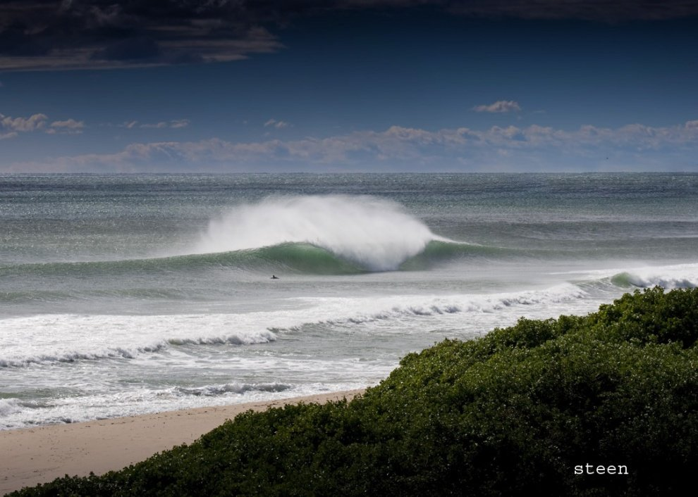 steeno's photo of Warriewood