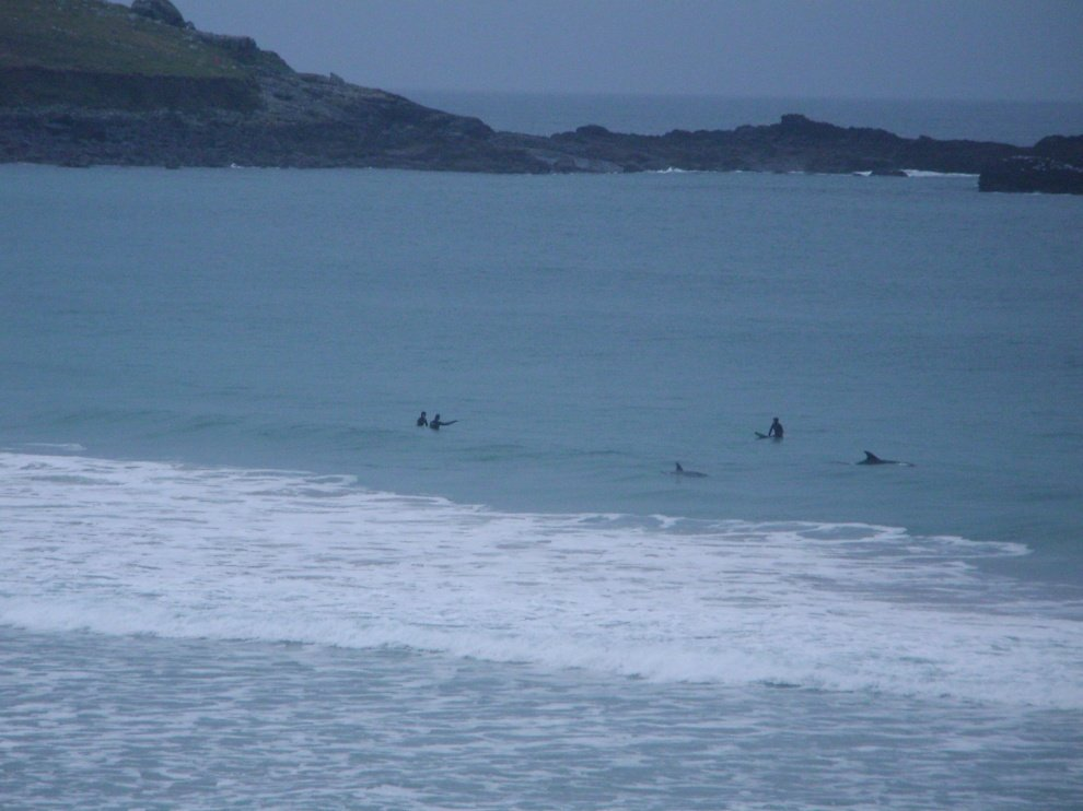 chris 's photo of Porthmeor