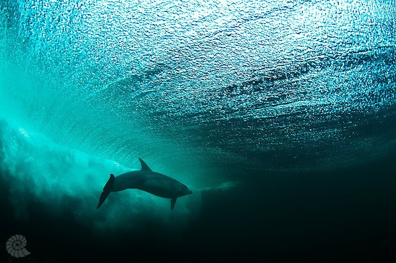 George Karbus's photo of Lahinch - Shit Creek
