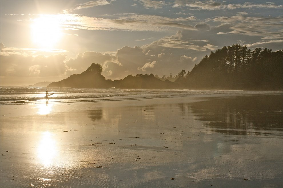 muppet's photo of Tofino (Cox Bay)
