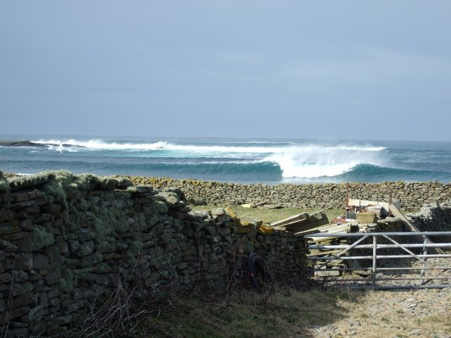 hipmasama's photo of Birsay Bay