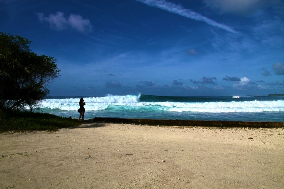 World Surfaris 's photo of Lohi's
