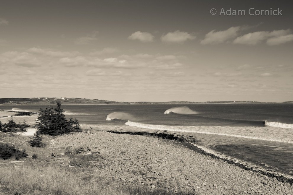 Adam Cornick's photo of Cow Bay