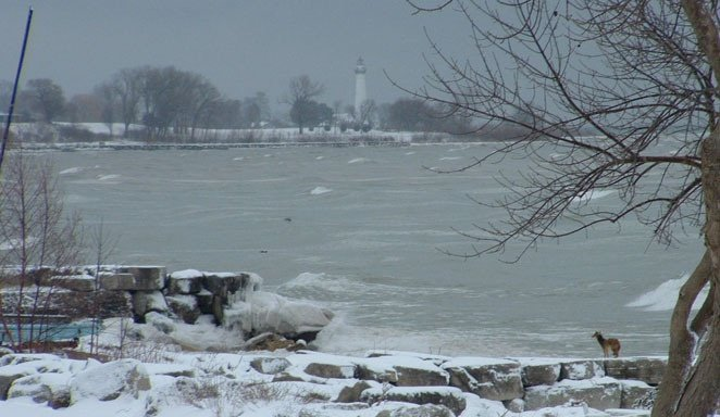Burton H's photo of Racine