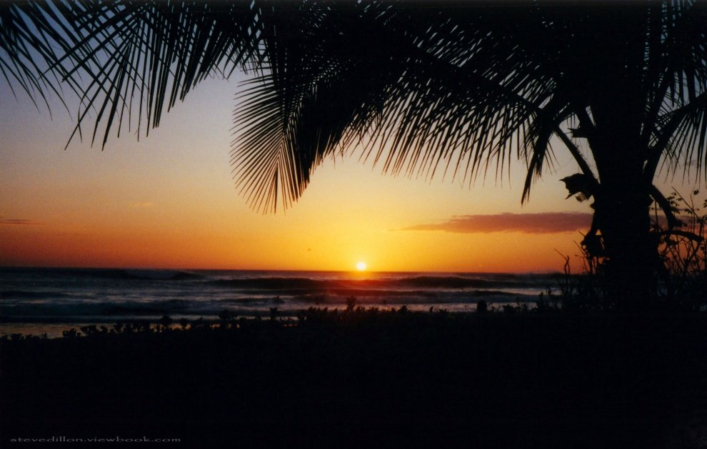 Steve Dillon Photo's photo of Playa Grande - Guanacaste