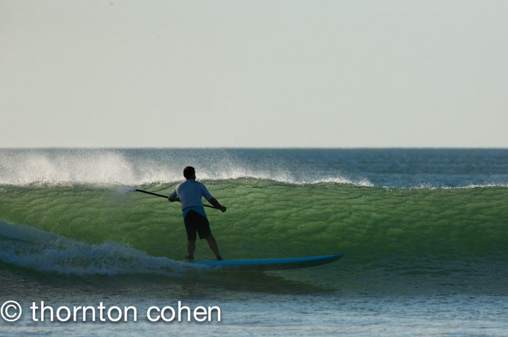Thornton Cohen's photo of Tamarindo