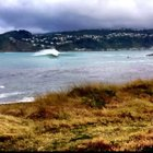 Photo of Lyall Bay