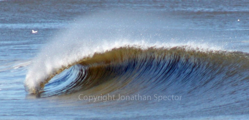 Jonathan Spector Photography 's photo of Deal