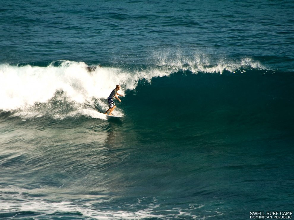Swell Surf Camp's photo of La Preciosa
