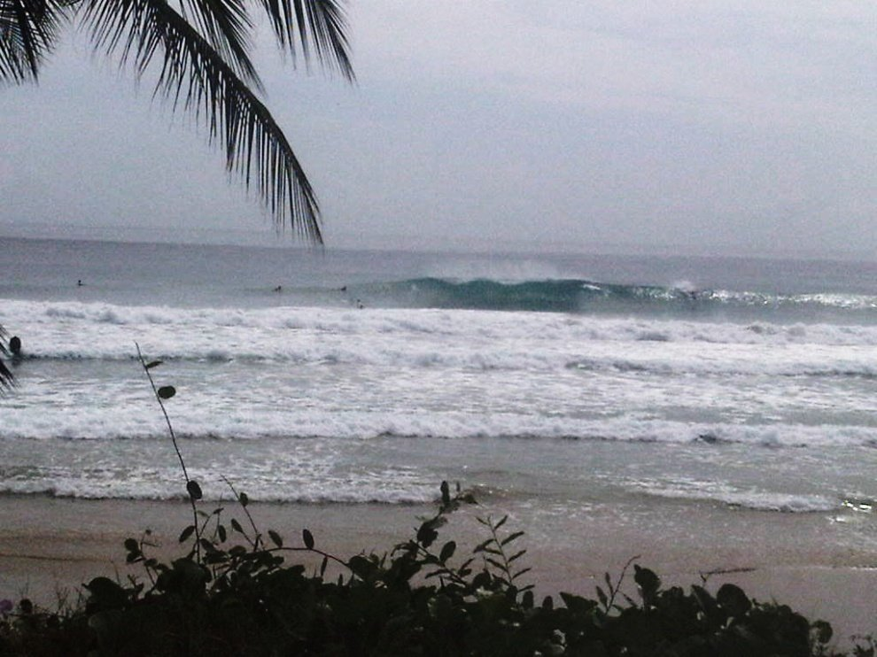 charlie_surf_ve's photo of Guacuco