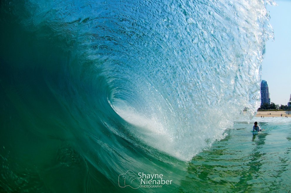Shayne NIenaber's photo of Narrowneck