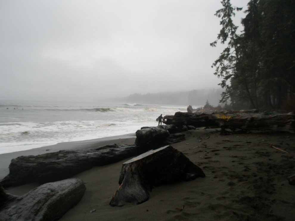 Nikalopolas's photo of Vancouver Island South (Jordan River)
