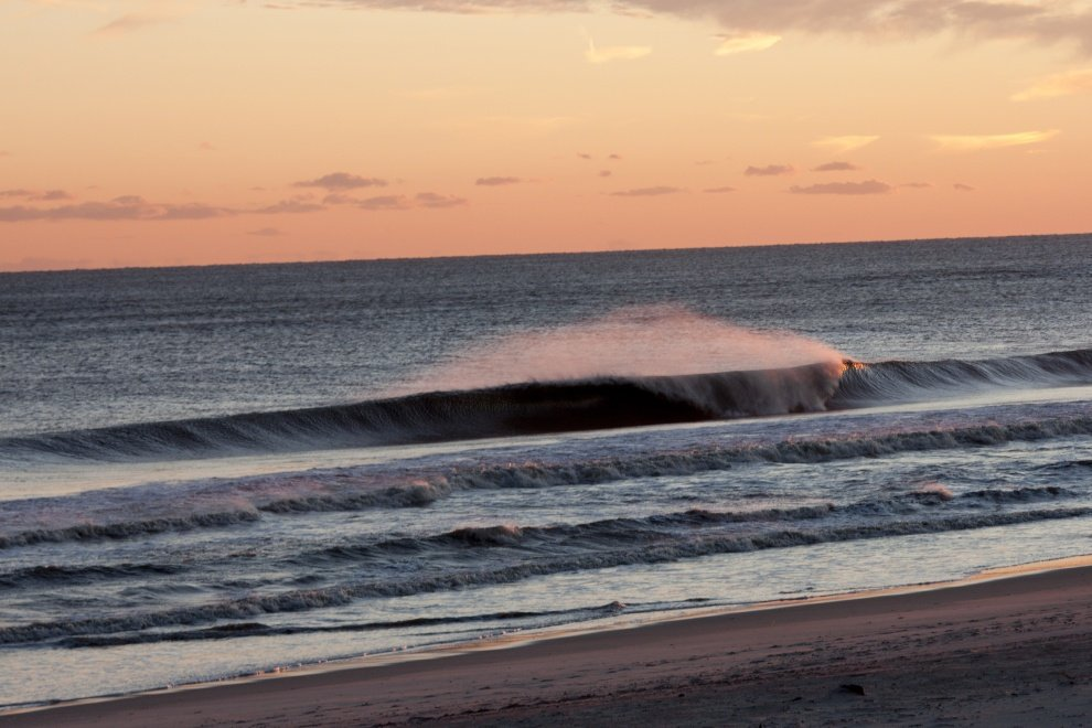Donovan Moran's photo of Fire Island