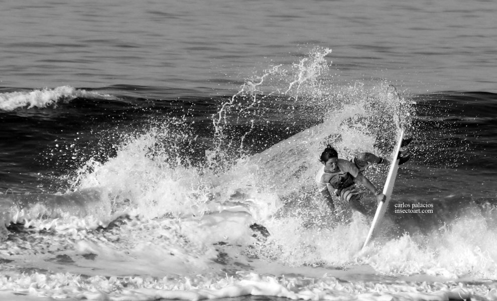 INSECTO SURF PHOTOGRAPHY's photo of Playa Santa Teresa