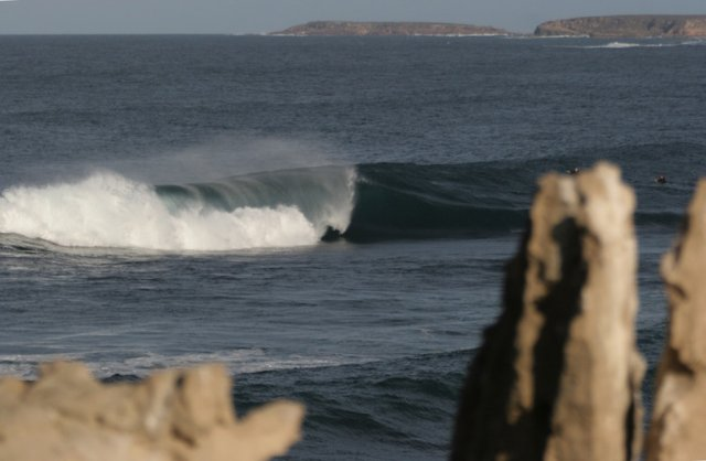 Tim. White.'s photo of Witzig's (Point Sinclair)