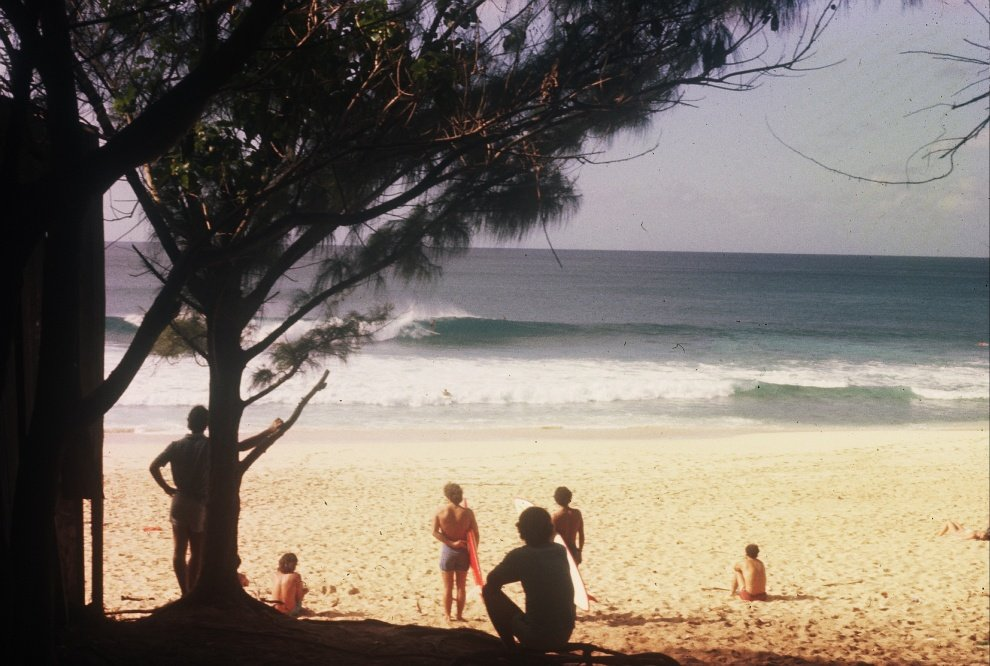 mathias mentzing's photo of Pipeline & Backdoor