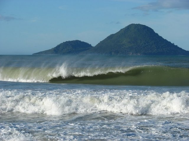 rutts's photo of Ohope Beach