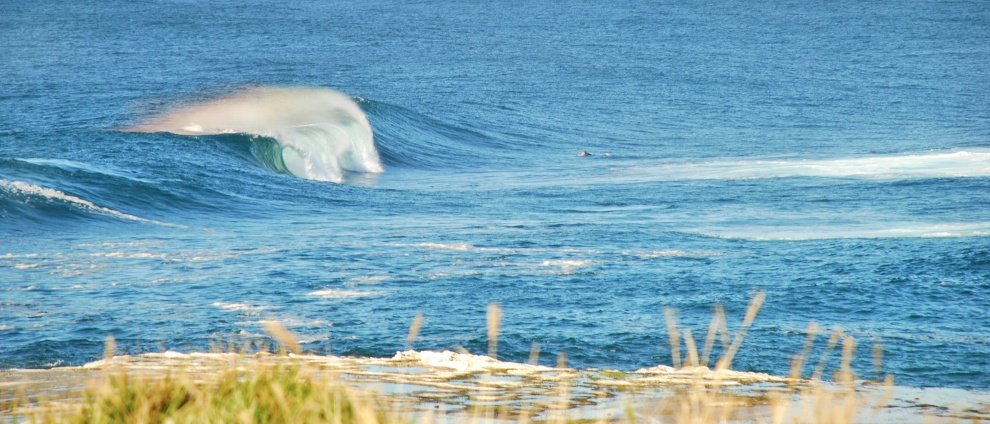 Judd Findlay's photo of Sydney (Cronulla)