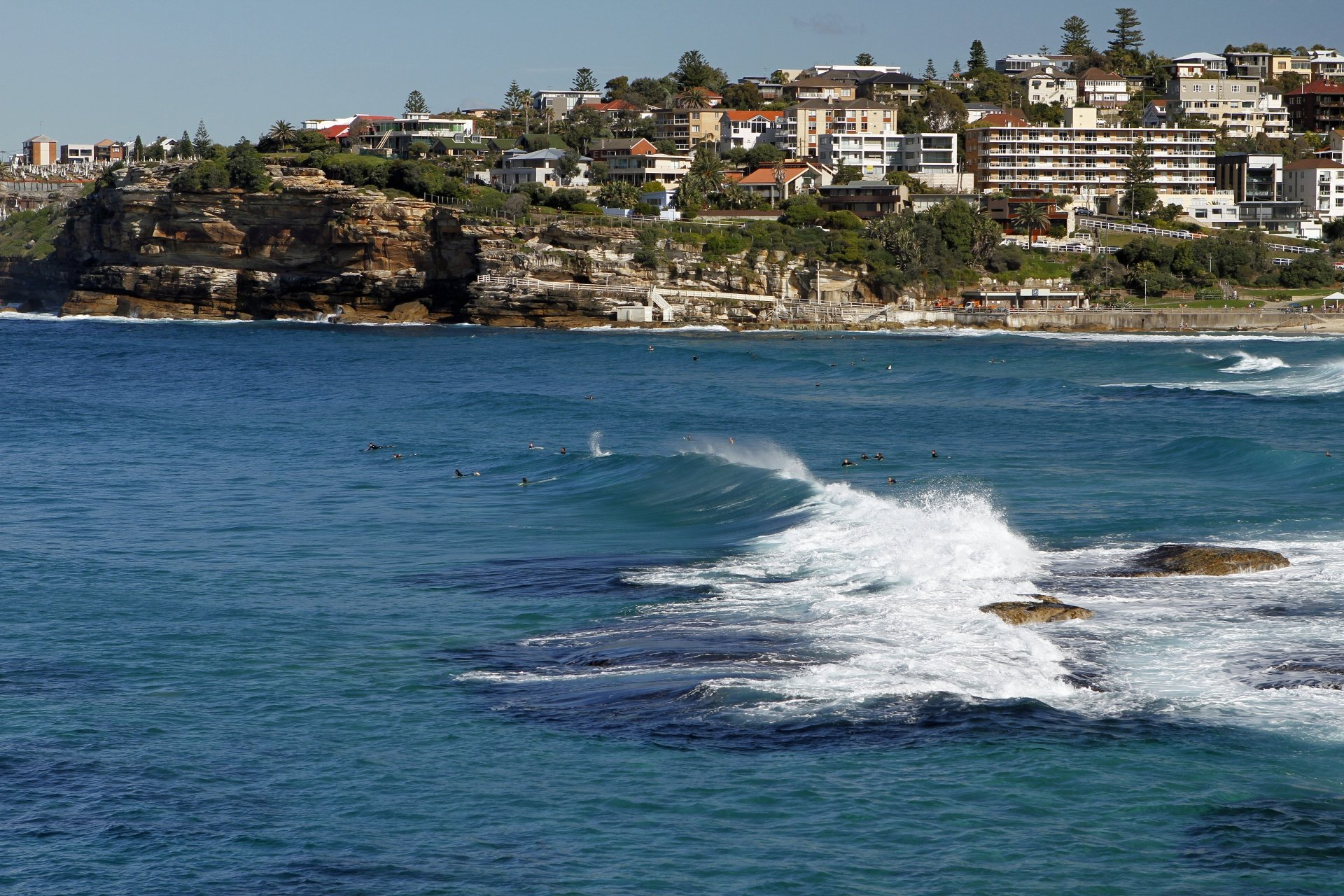 Fernando Lores's photo of Sydney (Bondi)