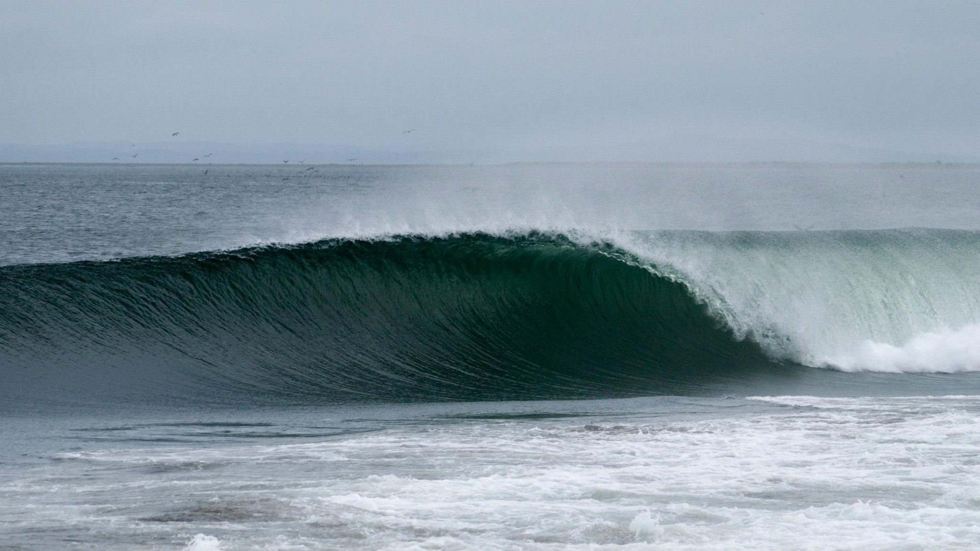 Justin Martin's photo of Westport
