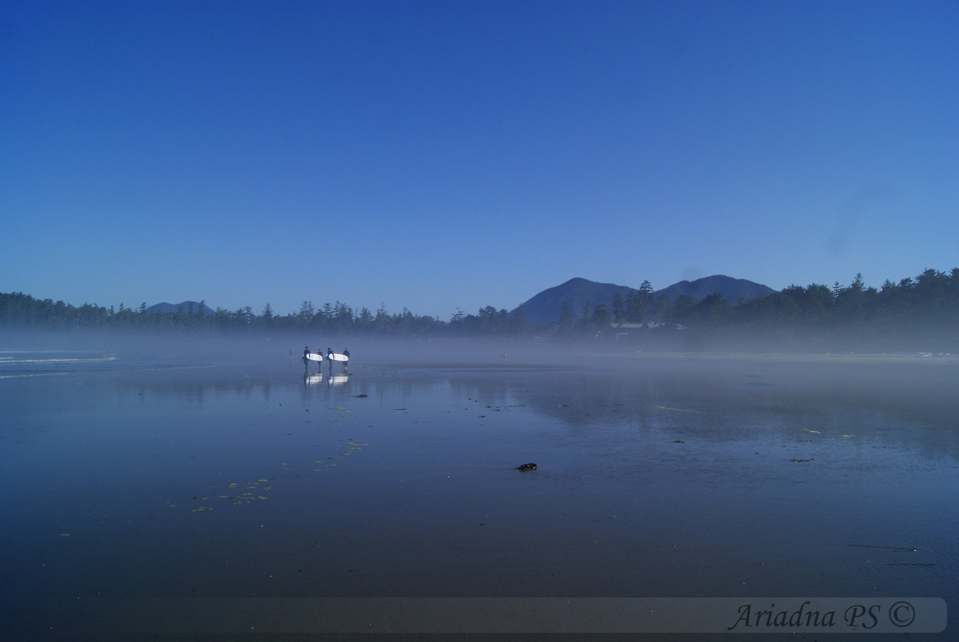 Ariadna PS's photo of Tofino (Chesterman Beach)