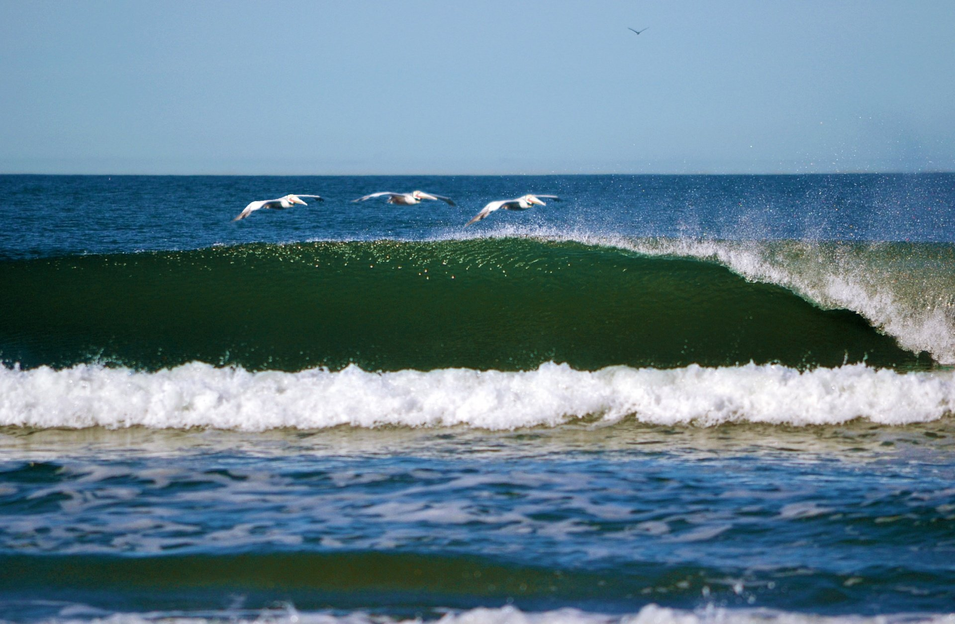 SteveWeatherford's photo of Mission Beach (San Diego)