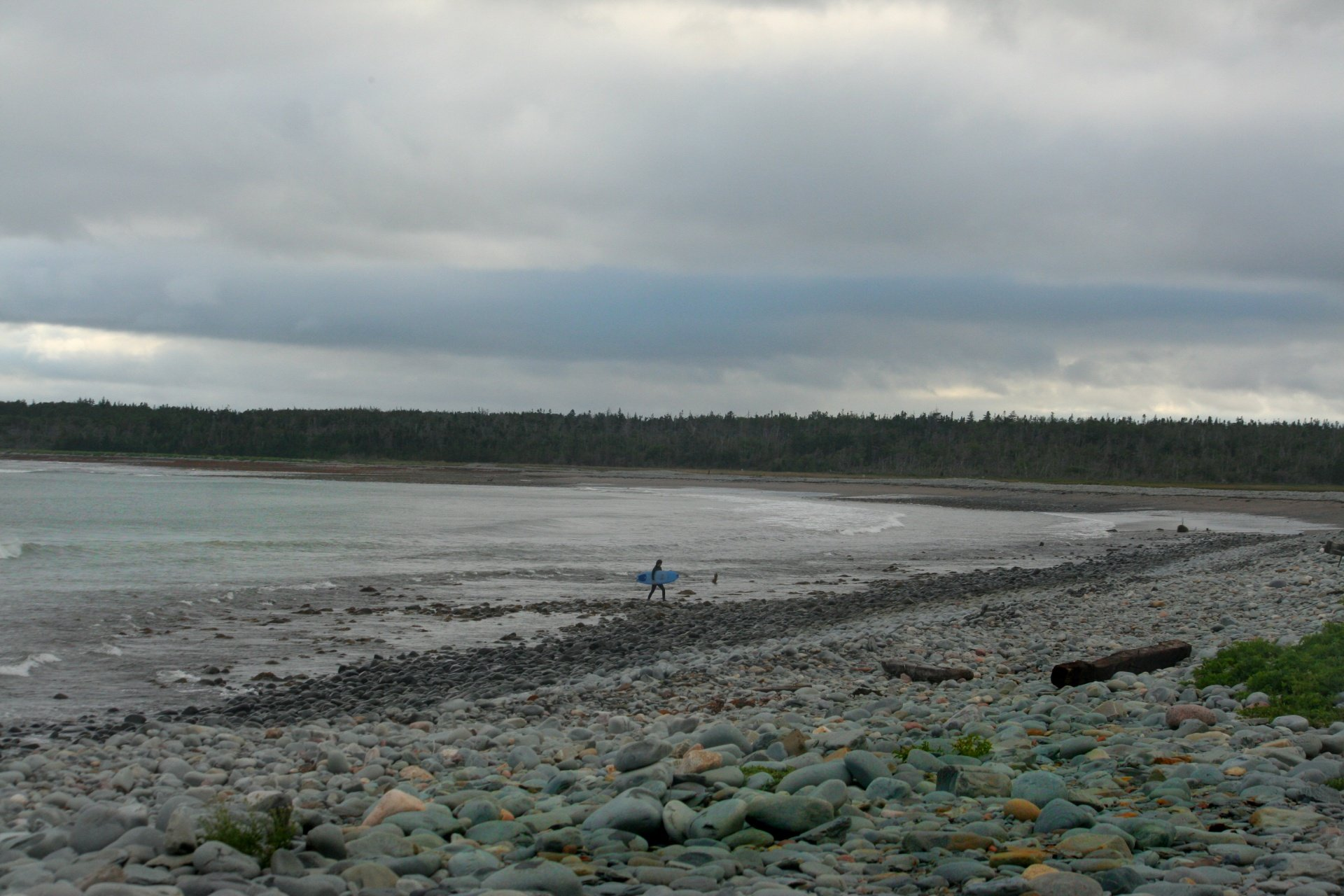 Adam Rondelet's photo of Cow Bay
