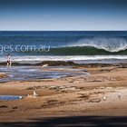 Photo of Wollongong