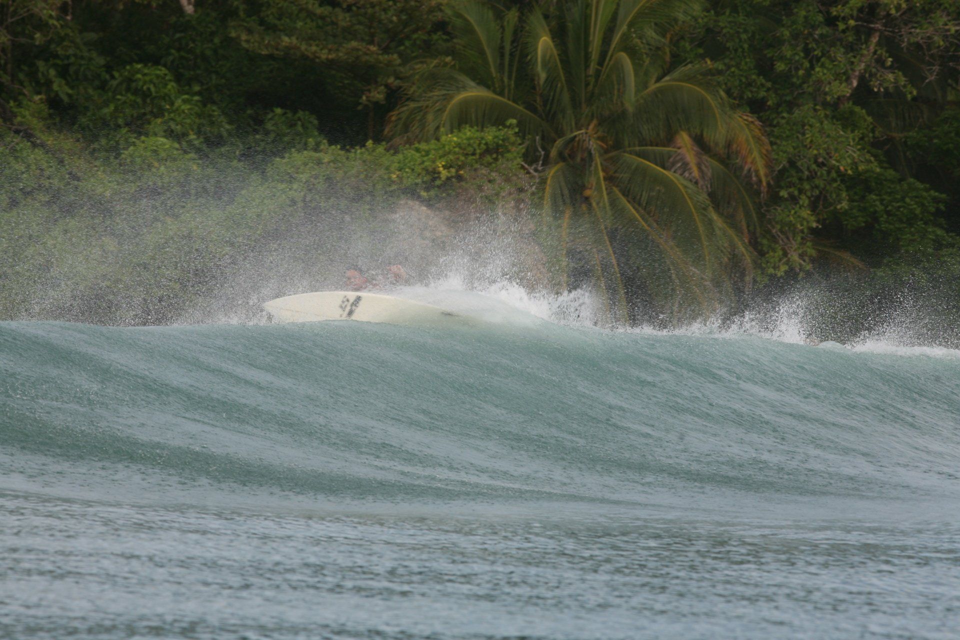 bocasdeltoro's photo of Careneros