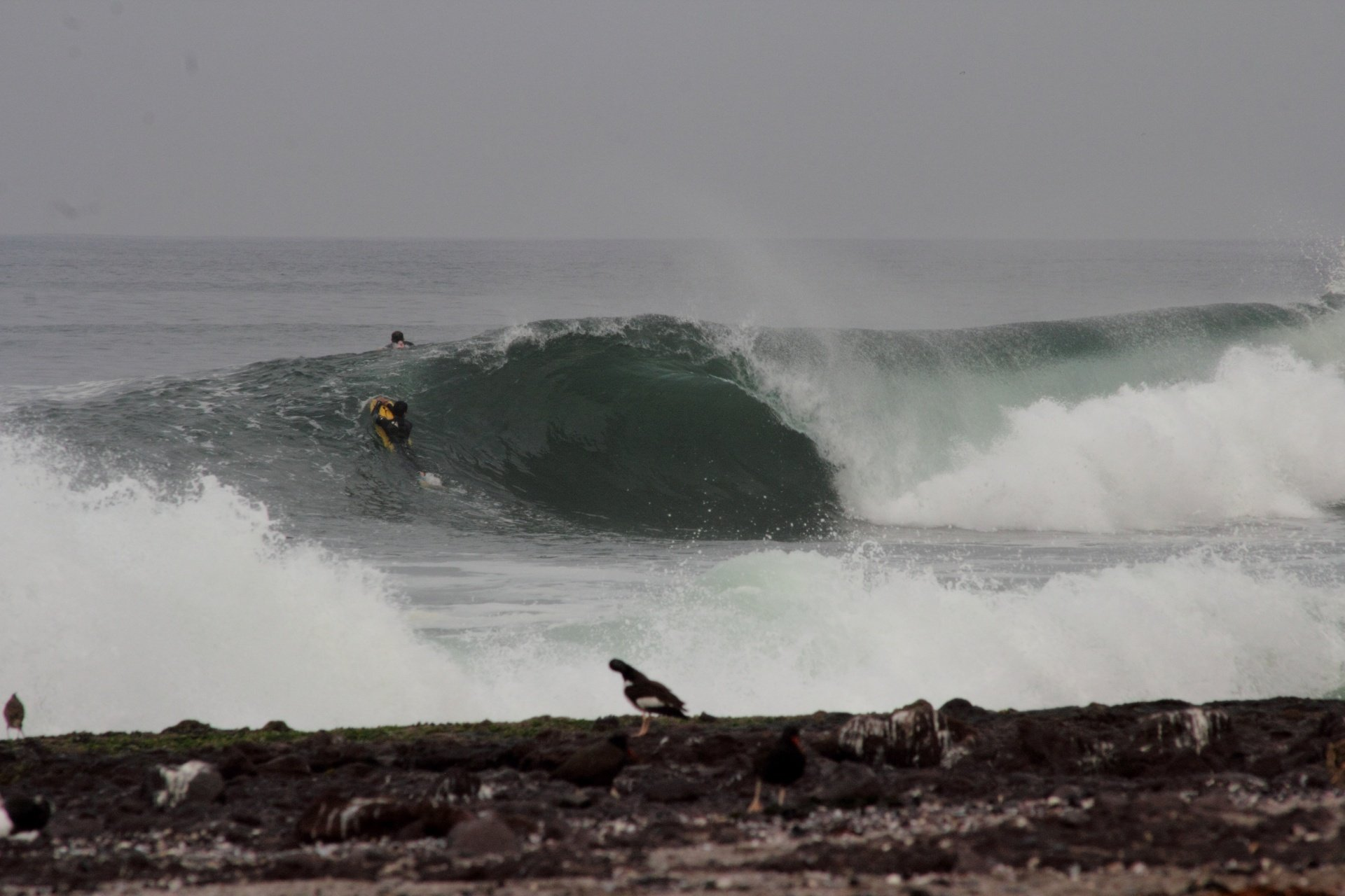 Martin Iribarne's photo of Punta Dos