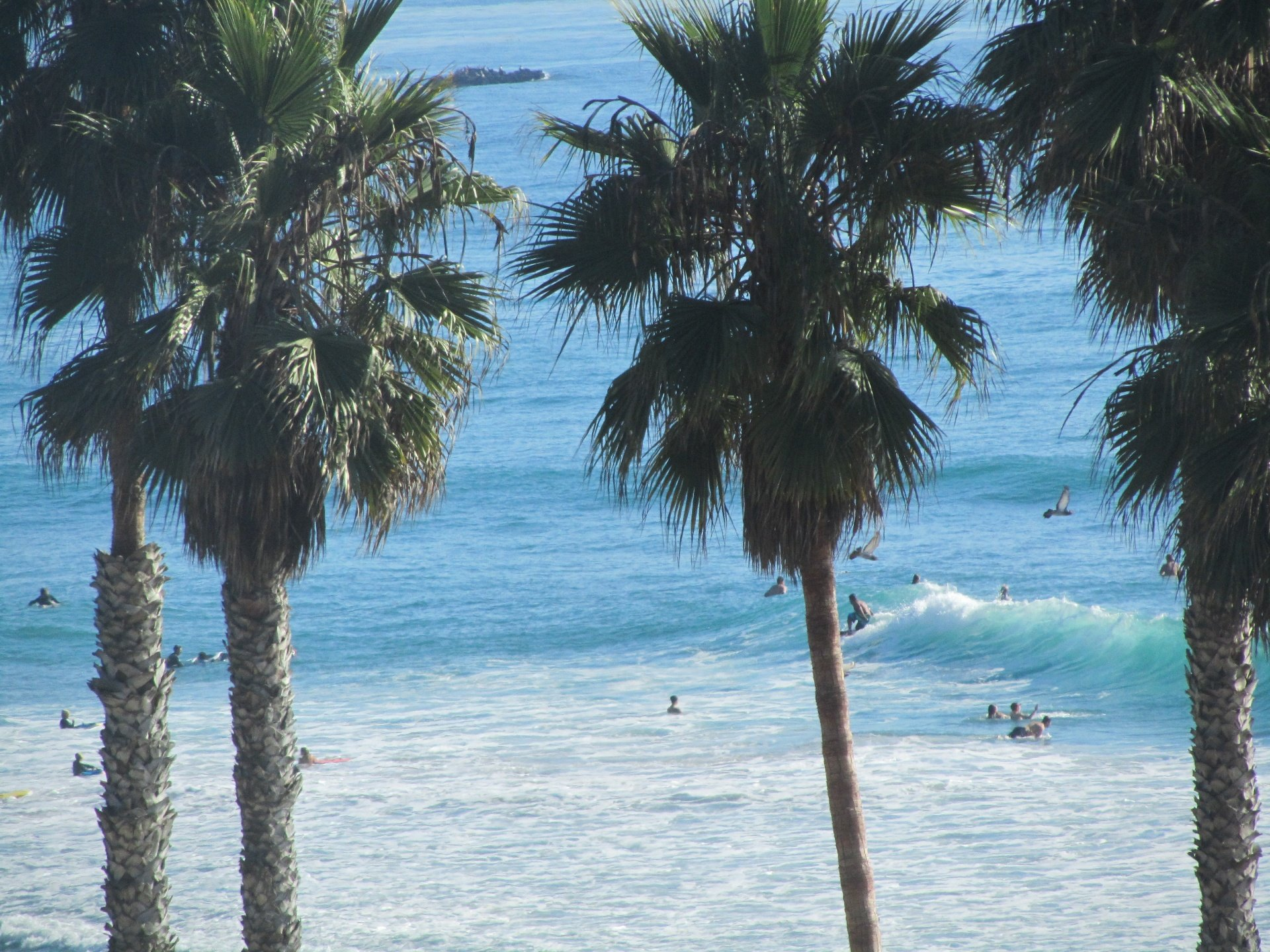 Gregory Borne's photo of T Street (Trafalgar Street)