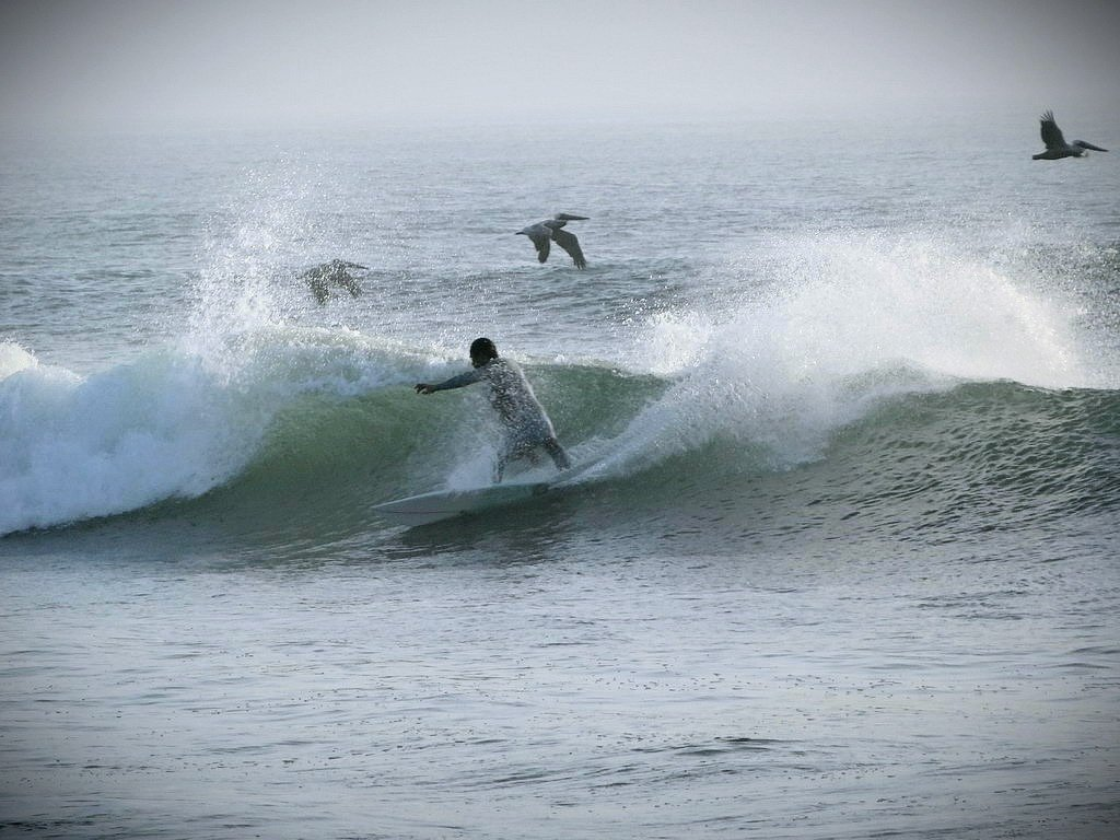 Mike Townsend's photo of Trestles